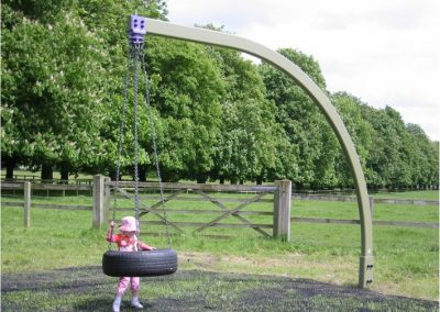 Cantilever Tyre Swing